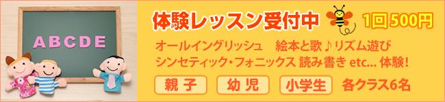 体験レッスン1回500円